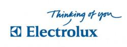 Логотип компании Electrolux (Электролюкс), много, много новых идей по антропологии и евгенике разработано основателем Шведской компании электролюкс.